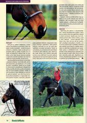 O firmě AIVA Koně a hříbata 02/2014