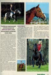 O firmě AIVA Koně a hříbata 01/2014