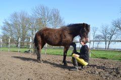 Ajanka je najúžastnejší kôň :) Náš menší trik :D