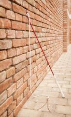 Mrkvová hůlka CLASSIC oplétaná 120 cm AIVA carrotstick