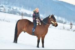 Kůň nebo pejsek? Oba dva!