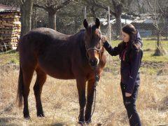 """""""Koni nezáleží na tom, jak moc víš, dokud neví, jak moc ti na něm záleží."""""""